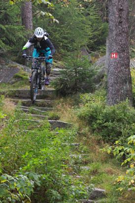 bikepark ochsenkopf im fichtelgebirge: downhill