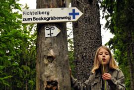 wandern fichtelgebirge, freizeit und sport: herrliche wanderwege