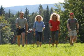 freizeit und sport: nordic walking im fichtelgebirge